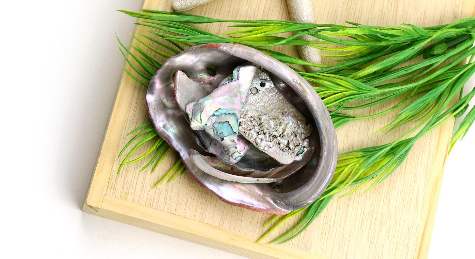 Beads & Shells